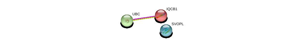 http://string-db.org/version_10/api/image/networkList?limit=0&targetmode=proteins&caller_identity=gene_cards&network_flavor=evidence&identifiers=9606.ENSP00000405482%0d%0a9606.ENSP00000311505%0d%0a9606.ENSP00000344818%0d%0a