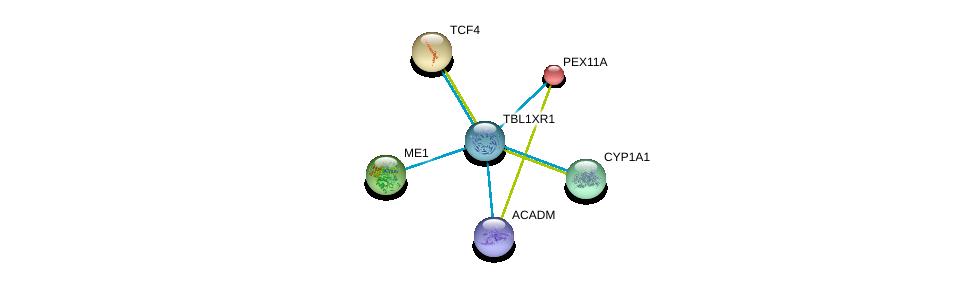 http://string-db.org/version_10/api/image/networkList?limit=0&targetmode=proteins&caller_identity=gene_cards&network_flavor=evidence&identifiers=9606.ENSP00000405574%0d%0a9606.ENSP00000358719%0d%0a9606.ENSP00000409612%0d%0a9606.ENSP00000300056%0d%0a9606.ENSP00000369050%0d%0a9606.ENSP00000346440%0d%0a