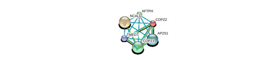 http://string-db.org/version_10/api/image/networkList?limit=0&targetmode=proteins&caller_identity=gene_cards&network_flavor=evidence&identifiers=9606.ENSP00000405926%0d%0a9606.ENSP00000238855%0d%0a9606.ENSP00000006101%0d%0a9606.ENSP00000220931%0d%0a9606.ENSP00000262061%0d%0a9606.ENSP00000263270%0d%0a