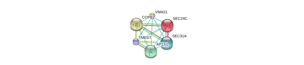 http://string-db.org/version_10/api/image/networkList?limit=0&targetmode=proteins&caller_identity=gene_cards&network_flavor=evidence&identifiers=9606.ENSP00000405926%0d%0a9606.ENSP00000333255%0d%0a9606.ENSP00000336666%0d%0a9606.ENSP00000329419%0d%0a9606.ENSP00000321845%0d%0a9606.ENSP00000347329%0d%0a
