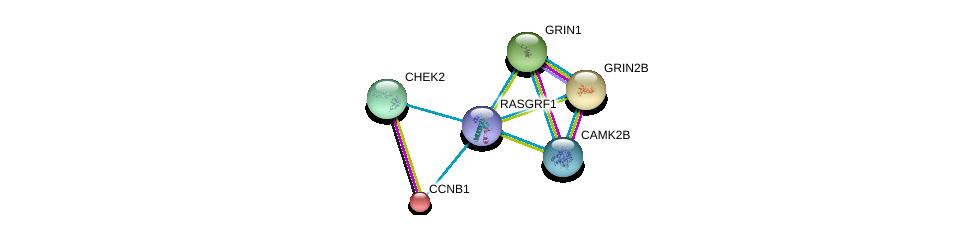 http://string-db.org/version_10/api/image/networkList?limit=0&targetmode=proteins&caller_identity=gene_cards&network_flavor=evidence&identifiers=9606.ENSP00000405963%0d%0a9606.ENSP00000372023%0d%0a9606.ENSP00000279593%0d%0a9606.ENSP00000256442%0d%0a9606.ENSP00000379098%0d%0a9606.ENSP00000360608%0d%0a