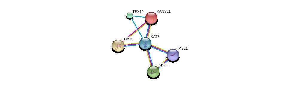 http://string-db.org/version_10/api/image/networkList?limit=0&targetmode=proteins&caller_identity=gene_cards&network_flavor=evidence&identifiers=9606.ENSP00000406037%0d%0a9606.ENSP00000462945%0d%0a9606.ENSP00000312244%0d%0a9606.ENSP00000269305%0d%0a9606.ENSP00000262419%0d%0a9606.ENSP00000364037%0d%0a