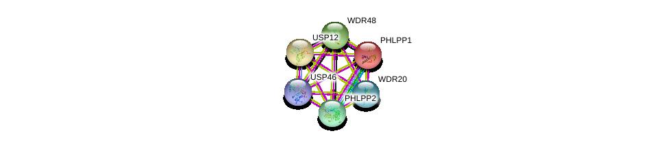 http://string-db.org/version_10/api/image/networkList?limit=0&targetmode=proteins&caller_identity=gene_cards&network_flavor=evidence&identifiers=9606.ENSP00000406084%0d%0a9606.ENSP00000282344%0d%0a9606.ENSP00000407818%0d%0a9606.ENSP00000348611%0d%0a9606.ENSP00000307491%0d%0a9606.ENSP00000262719%0d%0a