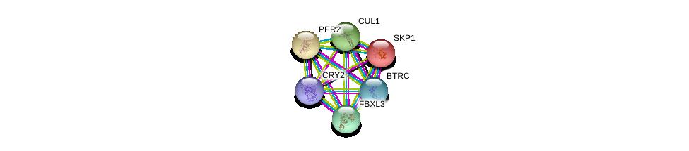 http://string-db.org/version_10/api/image/networkList?limit=0&targetmode=proteins&caller_identity=gene_cards&network_flavor=evidence&identifiers=9606.ENSP00000406751%0d%0a9606.ENSP00000359206%0d%0a9606.ENSP00000347834%0d%0a9606.ENSP00000326804%0d%0a9606.ENSP00000231487%0d%0a9606.ENSP00000254657%0d%0a