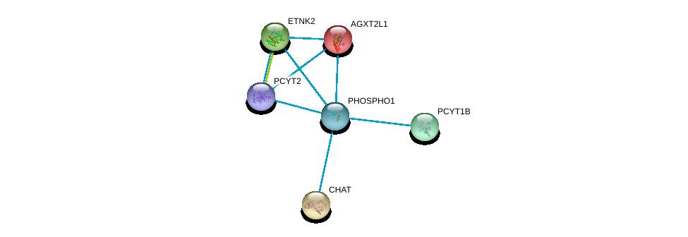 http://string-db.org/version_10/api/image/networkList?limit=0&targetmode=proteins&caller_identity=gene_cards&network_flavor=evidence&identifiers=9606.ENSP00000406909%0d%0a9606.ENSP00000296486%0d%0a9606.ENSP00000337103%0d%0a9606.ENSP00000356170%0d%0a9606.ENSP00000368439%0d%0a9606.ENSP00000442050%0d%0a