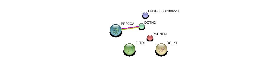 http://string-db.org/version_10/api/image/networkList?limit=0&targetmode=proteins&caller_identity=gene_cards&network_flavor=evidence&identifiers=9606.ENSP00000407353%0d%0a9606.ENSP00000255448%0d%0a9606.ENSP00000408910%0d%0a9606.ENSP00000222266%0d%0a9606.ENSP00000468389%0d%0a9606.ENSP00000418447%0d%0a
