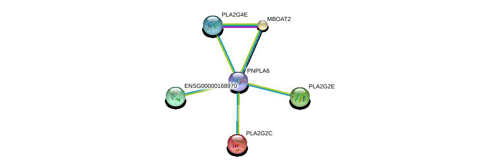 http://string-db.org/version_10/api/image/networkList?limit=0&targetmode=proteins&caller_identity=gene_cards&network_flavor=evidence&identifiers=9606.ENSP00000407509%0d%0a9606.ENSP00000247992%0d%0a9606.ENSP00000382434%0d%0a9606.ENSP00000371886%0d%0a9606.ENSP00000364257%0d%0a9606.ENSP00000302177%0d%0a