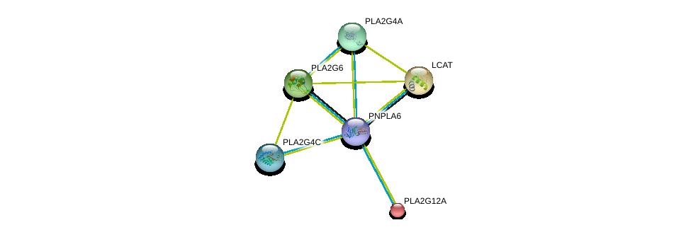 http://string-db.org/version_10/api/image/networkList?limit=0&targetmode=proteins&caller_identity=gene_cards&network_flavor=evidence&identifiers=9606.ENSP00000407509%0d%0a9606.ENSP00000356436%0d%0a9606.ENSP00000264005%0d%0a9606.ENSP00000243501%0d%0a9606.ENSP00000333142%0d%0a9606.ENSP00000400036%0d%0a