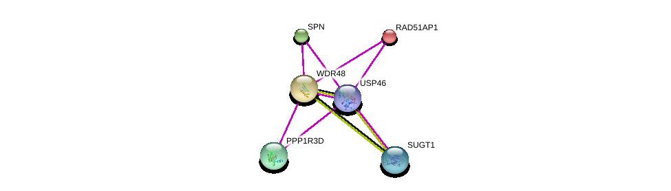 http://string-db.org/version_10/api/image/networkList?limit=0&targetmode=proteins&caller_identity=gene_cards&network_flavor=evidence&identifiers=9606.ENSP00000407818%0d%0a9606.ENSP00000353238%0d%0a9606.ENSP00000360035%0d%0a9606.ENSP00000367208%0d%0a9606.ENSP00000228843%0d%0a9606.ENSP00000307491%0d%0a