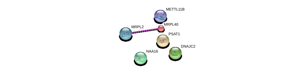 http://string-db.org/version_10/api/image/networkList?limit=0&targetmode=proteins&caller_identity=gene_cards&network_flavor=evidence&identifiers=9606.ENSP00000408058%0d%0a9606.ENSP00000373404%0d%0a9606.ENSP00000368565%0d%0a9606.ENSP00000365773%0d%0a9606.ENSP00000333401%0d%0a9606.ENSP00000368716%0d%0a