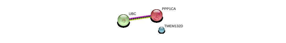 http://string-db.org/version_10/api/image/networkList?limit=0&targetmode=proteins&caller_identity=gene_cards&network_flavor=evidence&identifiers=9606.ENSP00000408581%0d%0a9606.ENSP00000326031%0d%0a9606.ENSP00000344818%0d%0a