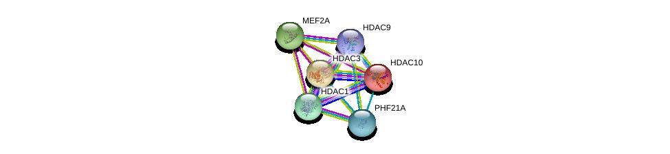 http://string-db.org/version_10/api/image/networkList?limit=0&targetmode=proteins&caller_identity=gene_cards&network_flavor=evidence&identifiers=9606.ENSP00000408617%0d%0a9606.ENSP00000362649%0d%0a9606.ENSP00000302967%0d%0a9606.ENSP00000346389%0d%0a9606.ENSP00000398824%0d%0a9606.ENSP00000216271%0d%0a