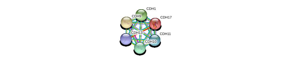 http://string-db.org/version_10/api/image/networkList?limit=0&targetmode=proteins&caller_identity=gene_cards&network_flavor=evidence&identifiers=9606.ENSP00000408632%0d%0a9606.ENSP00000027335%0d%0a9606.ENSP00000231021%0d%0a9606.ENSP00000261769%0d%0a9606.ENSP00000264463%0d%0a9606.ENSP00000268603%0d%0a