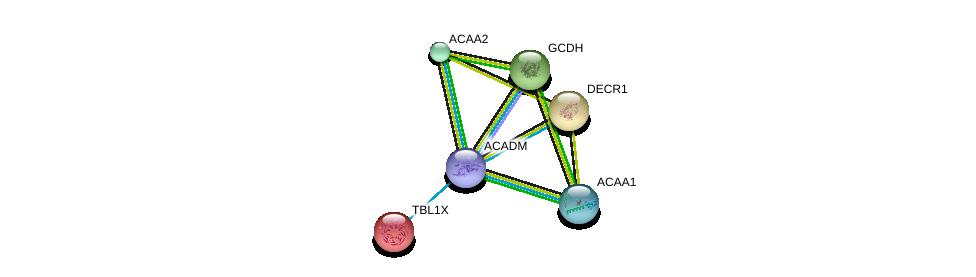 http://string-db.org/version_10/api/image/networkList?limit=0&targetmode=proteins&caller_identity=gene_cards&network_flavor=evidence&identifiers=9606.ENSP00000409612%0d%0a9606.ENSP00000285093%0d%0a9606.ENSP00000333664%0d%0a9606.ENSP00000217964%0d%0a9606.ENSP00000220764%0d%0a9606.ENSP00000222214%0d%0a