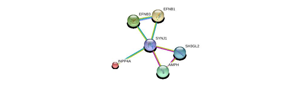 http://string-db.org/version_10/api/image/networkList?limit=0&targetmode=proteins&caller_identity=gene_cards&network_flavor=evidence&identifiers=9606.ENSP00000409667%0d%0a9606.ENSP00000369981%0d%0a9606.ENSP00000348602%0d%0a9606.ENSP00000074304%0d%0a9606.ENSP00000204961%0d%0a9606.ENSP00000226091%0d%0a