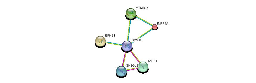 http://string-db.org/version_10/api/image/networkList?limit=0&targetmode=proteins&caller_identity=gene_cards&network_flavor=evidence&identifiers=9606.ENSP00000409667%0d%0a9606.ENSP00000369981%0d%0a9606.ENSP00000348602%0d%0a9606.ENSP00000074304%0d%0a9606.ENSP00000296003%0d%0a9606.ENSP00000204961%0d%0a