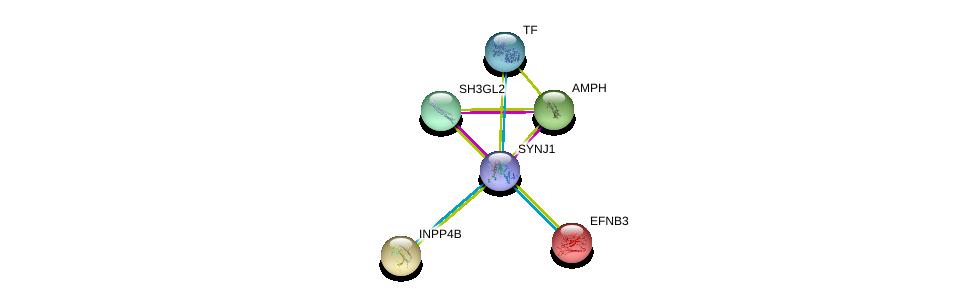 http://string-db.org/version_10/api/image/networkList?limit=0&targetmode=proteins&caller_identity=gene_cards&network_flavor=evidence&identifiers=9606.ENSP00000409667%0d%0a9606.ENSP00000369981%0d%0a9606.ENSP00000348602%0d%0a9606.ENSP00000262992%0d%0a9606.ENSP00000226091%0d%0a9606.ENSP00000385834%0d%0a