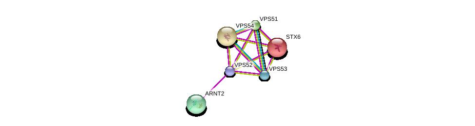 http://string-db.org/version_10/api/image/networkList?limit=0&targetmode=proteins&caller_identity=gene_cards&network_flavor=evidence&identifiers=9606.ENSP00000409952%0d%0a9606.ENSP00000272322%0d%0a9606.ENSP00000401435%0d%0a9606.ENSP00000279281%0d%0a9606.ENSP00000307479%0d%0a9606.ENSP00000258301%0d%0a