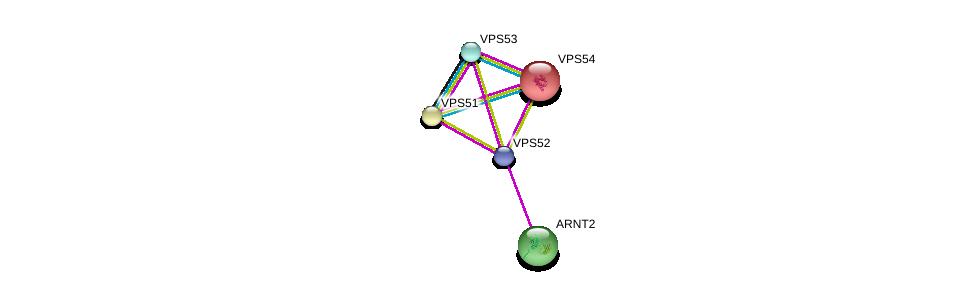http://string-db.org/version_10/api/image/networkList?limit=0&targetmode=proteins&caller_identity=gene_cards&network_flavor=evidence&identifiers=9606.ENSP00000409952%0d%0a9606.ENSP00000401435%0d%0a9606.ENSP00000272322%0d%0a9606.ENSP00000279281%0d%0a9606.ENSP00000307479%0d%0a9606.ENSP00000307479%0d%0a