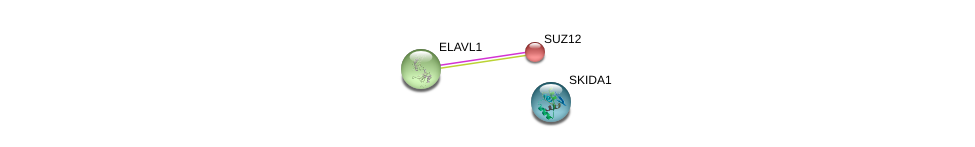 http://string-db.org/version_10/api/image/networkList?limit=0&targetmode=proteins&caller_identity=gene_cards&network_flavor=evidence&identifiers=9606.ENSP00000410041%0d%0a9606.ENSP00000385269%0d%0a9606.ENSP00000316578%0d%0a