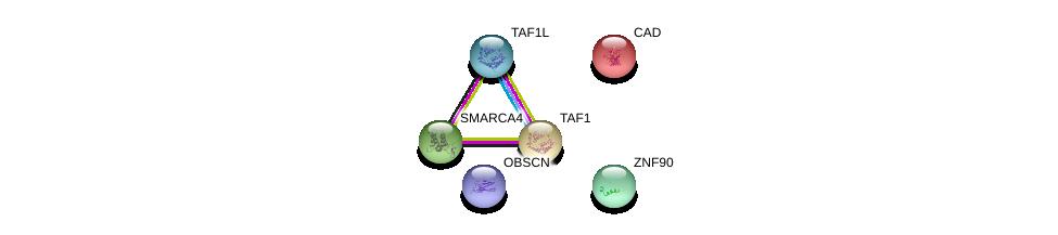 http://string-db.org/version_10/api/image/networkList?limit=0&targetmode=proteins&caller_identity=gene_cards&network_flavor=evidence&identifiers=9606.ENSP00000410466%0d%0a9606.ENSP00000264705%0d%0a9606.ENSP00000455507%0d%0a9606.ENSP00000418379%0d%0a9606.ENSP00000276072%0d%0a9606.ENSP00000350720%0d%0a
