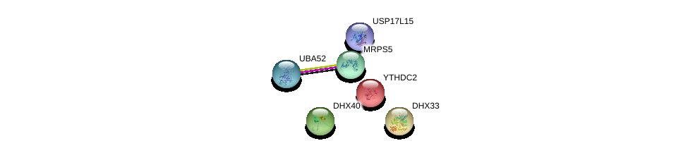 http://string-db.org/version_10/api/image/networkList?limit=0&targetmode=proteins&caller_identity=gene_cards&network_flavor=evidence&identifiers=9606.ENSP00000410621%0d%0a9606.ENSP00000272418%0d%0a9606.ENSP00000388107%0d%0a9606.ENSP00000161863%0d%0a9606.ENSP00000225296%0d%0a9606.ENSP00000251241%0d%0a