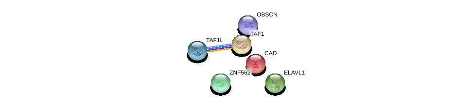 http://string-db.org/version_10/api/image/networkList?limit=0&targetmode=proteins&caller_identity=gene_cards&network_flavor=evidence&identifiers=9606.ENSP00000410734%0d%0a9606.ENSP00000385269%0d%0a9606.ENSP00000264705%0d%0a9606.ENSP00000455507%0d%0a9606.ENSP00000418379%0d%0a9606.ENSP00000276072%0d%0a