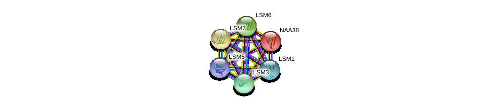 http://string-db.org/version_10/api/image/networkList?limit=0&targetmode=proteins&caller_identity=gene_cards&network_flavor=evidence&identifiers=9606.ENSP00000410758%0d%0a9606.ENSP00000249299%0d%0a9606.ENSP00000252622%0d%0a9606.ENSP00000296581%0d%0a9606.ENSP00000302160%0d%0a9606.ENSP00000310596%0d%0a