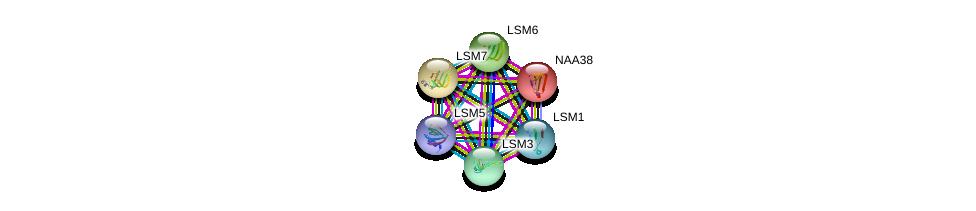 http://string-db.org/version_10/api/image/networkList?limit=0&targetmode=proteins&caller_identity=gene_cards&network_flavor=evidence&identifiers=9606.ENSP00000410758%0d%0a9606.ENSP00000252622%0d%0a9606.ENSP00000249299%0d%0a9606.ENSP00000296581%0d%0a9606.ENSP00000302160%0d%0a9606.ENSP00000310596%0d%0a