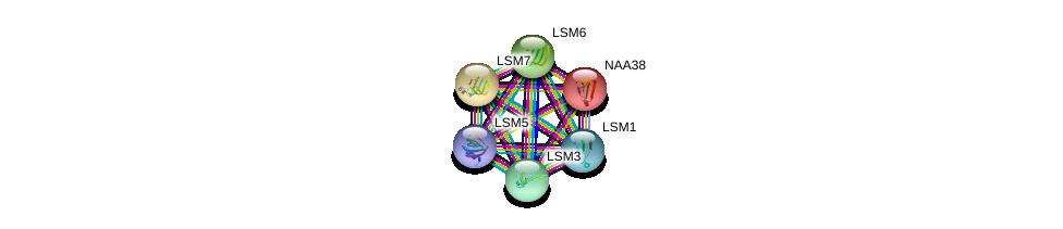 http://string-db.org/version_10/api/image/networkList?limit=0&targetmode=proteins&caller_identity=gene_cards&network_flavor=evidence&identifiers=9606.ENSP00000410758%0d%0a9606.ENSP00000252622%0d%0a9606.ENSP00000296581%0d%0a9606.ENSP00000302160%0d%0a9606.ENSP00000310596%0d%0a9606.ENSP00000249299%0d%0a