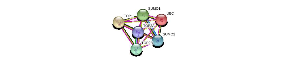 http://string-db.org/version_10/api/image/networkList?limit=0&targetmode=proteins&caller_identity=gene_cards&network_flavor=evidence&identifiers=9606.ENSP00000411532%0d%0a9606.ENSP00000344818%0d%0a9606.ENSP00000405965%0d%0a9606.ENSP00000396704%0d%0a9606.ENSP00000376076%0d%0a9606.ENSP00000354522%0d%0a