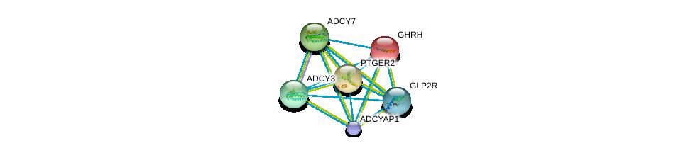 http://string-db.org/version_10/api/image/networkList?limit=0&targetmode=proteins&caller_identity=gene_cards&network_flavor=evidence&identifiers=9606.ENSP00000411658%0d%0a9606.ENSP00000237527%0d%0a9606.ENSP00000245457%0d%0a9606.ENSP00000254235%0d%0a9606.ENSP00000260600%0d%0a9606.ENSP00000262441%0d%0a