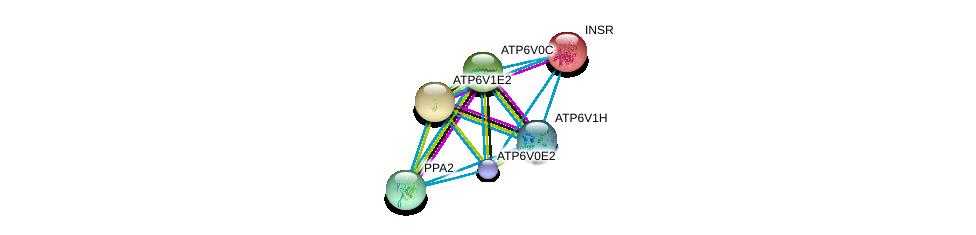 http://string-db.org/version_10/api/image/networkList?limit=0&targetmode=proteins&caller_identity=gene_cards&network_flavor=evidence&identifiers=9606.ENSP00000411672%0d%0a9606.ENSP00000303830%0d%0a9606.ENSP00000304891%0d%0a9606.ENSP00000329757%0d%0a9606.ENSP00000343885%0d%0a9606.ENSP00000352522%0d%0a