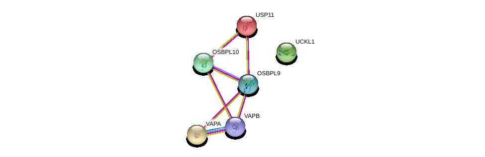 http://string-db.org/version_10/api/image/networkList?limit=0&targetmode=proteins&caller_identity=gene_cards&network_flavor=evidence&identifiers=9606.ENSP00000412733%0d%0a9606.ENSP00000379804%0d%0a9606.ENSP00000218348%0d%0a9606.ENSP00000345656%0d%0a9606.ENSP00000417175%0d%0a9606.ENSP00000346155%0d%0a