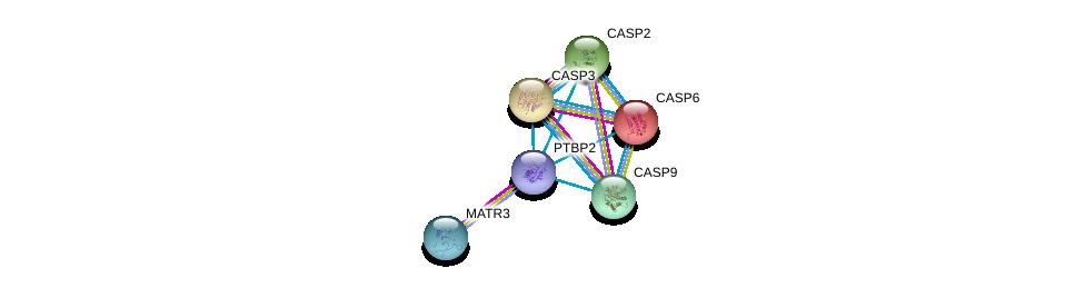 http://string-db.org/version_10/api/image/networkList?limit=0&targetmode=proteins&caller_identity=gene_cards&network_flavor=evidence&identifiers=9606.ENSP00000412788%0d%0a9606.ENSP00000354346%0d%0a9606.ENSP00000265164%0d%0a9606.ENSP00000311032%0d%0a9606.ENSP00000312664%0d%0a9606.ENSP00000330237%0d%0a