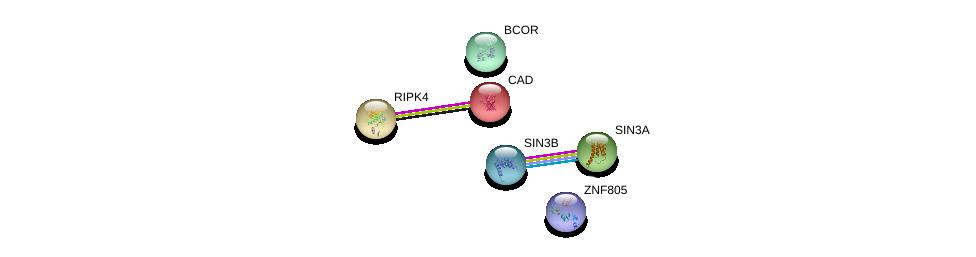 http://string-db.org/version_10/api/image/networkList?limit=0&targetmode=proteins&caller_identity=gene_cards&network_flavor=evidence&identifiers=9606.ENSP00000412999%0d%0a9606.ENSP00000353622%0d%0a9606.ENSP00000369131%0d%0a9606.ENSP00000367705%0d%0a9606.ENSP00000264705%0d%0a9606.ENSP00000332454%0d%0a