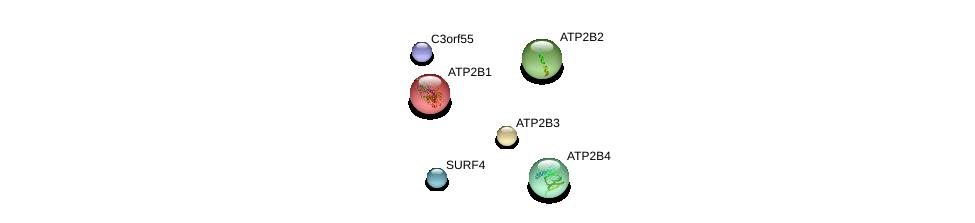 http://string-db.org/version_10/api/image/networkList?limit=0&targetmode=proteins&caller_identity=gene_cards&network_flavor=evidence&identifiers=9606.ENSP00000413228%0d%0a9606.ENSP00000324172%0d%0a9606.ENSP00000350310%0d%0a9606.ENSP00000263519%0d%0a9606.ENSP00000261173%0d%0a9606.ENSP00000361057%0d%0a