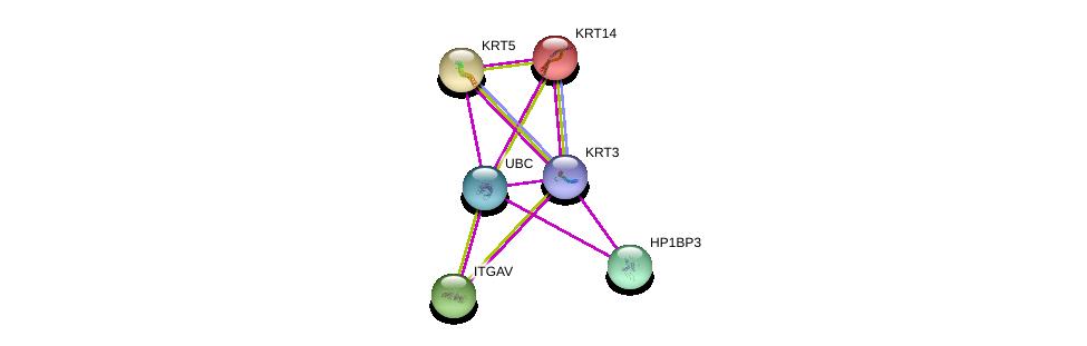 http://string-db.org/version_10/api/image/networkList?limit=0&targetmode=proteins&caller_identity=gene_cards&network_flavor=evidence&identifiers=9606.ENSP00000413479%0d%0a9606.ENSP00000167586%0d%0a9606.ENSP00000252242%0d%0a9606.ENSP00000344818%0d%0a9606.ENSP00000312625%0d%0a9606.ENSP00000261023%0d%0a