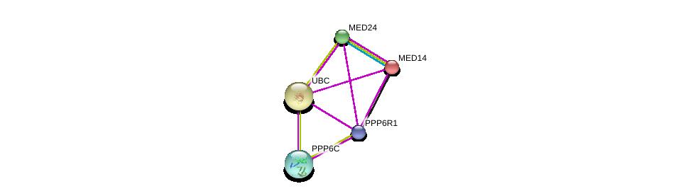 http://string-db.org/version_10/api/image/networkList?limit=0&targetmode=proteins&caller_identity=gene_cards&network_flavor=evidence&identifiers=9606.ENSP00000414202%0d%0a9606.ENSP00000377686%0d%0a9606.ENSP00000377686%0d%0a9606.ENSP00000392147%0d%0a9606.ENSP00000323720%0d%0a9606.ENSP00000344818%0d%0a