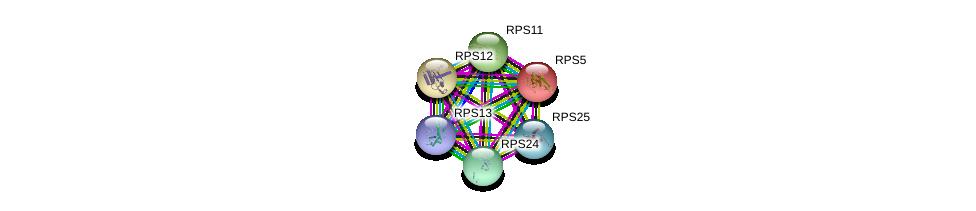 http://string-db.org/version_10/api/image/networkList?limit=0&targetmode=proteins&caller_identity=gene_cards&network_flavor=evidence&identifiers=9606.ENSP00000414321%0d%0a9606.ENSP00000270625%0d%0a9606.ENSP00000435777%0d%0a9606.ENSP00000196551%0d%0a9606.ENSP00000230050%0d%0a9606.ENSP00000435096%0d%0a