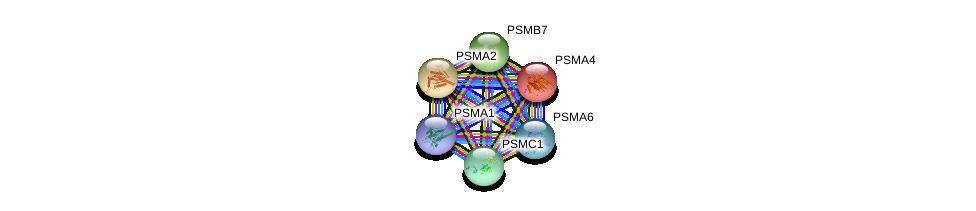 http://string-db.org/version_10/api/image/networkList?limit=0&targetmode=proteins&caller_identity=gene_cards&network_flavor=evidence&identifiers=9606.ENSP00000414359%0d%0a9606.ENSP00000044462%0d%0a9606.ENSP00000223321%0d%0a9606.ENSP00000259457%0d%0a9606.ENSP00000261303%0d%0a9606.ENSP00000261479%0d%0a