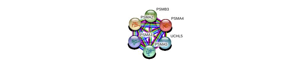 http://string-db.org/version_10/api/image/networkList?limit=0&targetmode=proteins&caller_identity=gene_cards&network_flavor=evidence&identifiers=9606.ENSP00000414359%0d%0a9606.ENSP00000356425%0d%0a9606.ENSP00000223321%0d%0a9606.ENSP00000044462%0d%0a9606.ENSP00000225426%0d%0a9606.ENSP00000271308%0d%0a