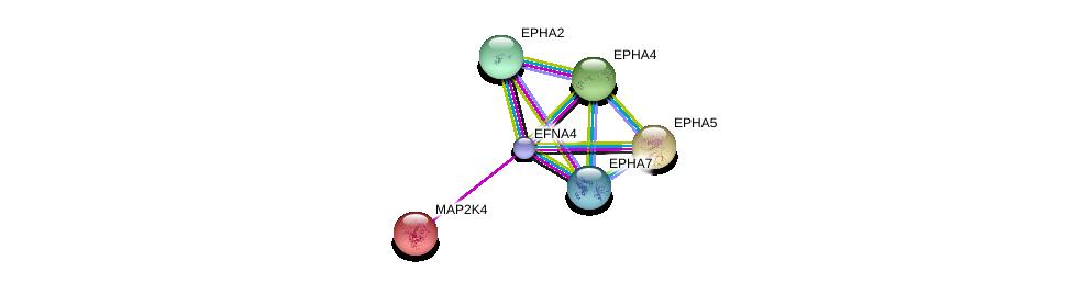 http://string-db.org/version_10/api/image/networkList?limit=0&targetmode=proteins&caller_identity=gene_cards&network_flavor=evidence&identifiers=9606.ENSP00000414378%0d%0a9606.ENSP00000358309%0d%0a9606.ENSP00000273854%0d%0a9606.ENSP00000351209%0d%0a9606.ENSP00000262445%0d%0a9606.ENSP00000281821%0d%0a