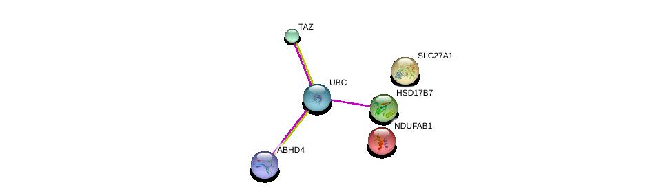 http://string-db.org/version_10/api/image/networkList?limit=0&targetmode=proteins&caller_identity=gene_cards&network_flavor=evidence&identifiers=9606.ENSP00000414558%0d%0a9606.ENSP00000344818%0d%0a9606.ENSP00000254521%0d%0a9606.ENSP00000007516%0d%0a9606.ENSP00000299328%0d%0a9606.ENSP00000252595%0d%0a