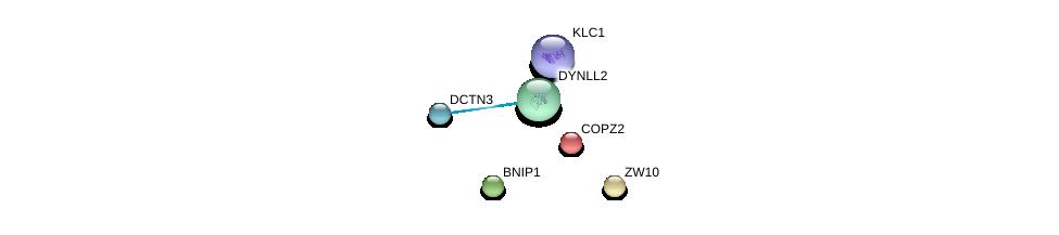 http://string-db.org/version_10/api/image/networkList?limit=0&targetmode=proteins&caller_identity=gene_cards&network_flavor=evidence&identifiers=9606.ENSP00000414982%0d%0a9606.ENSP00000200135%0d%0a9606.ENSP00000231668%0d%0a9606.ENSP00000240343%0d%0a9606.ENSP00000259632%0d%0a9606.ENSP00000006101%0d%0a