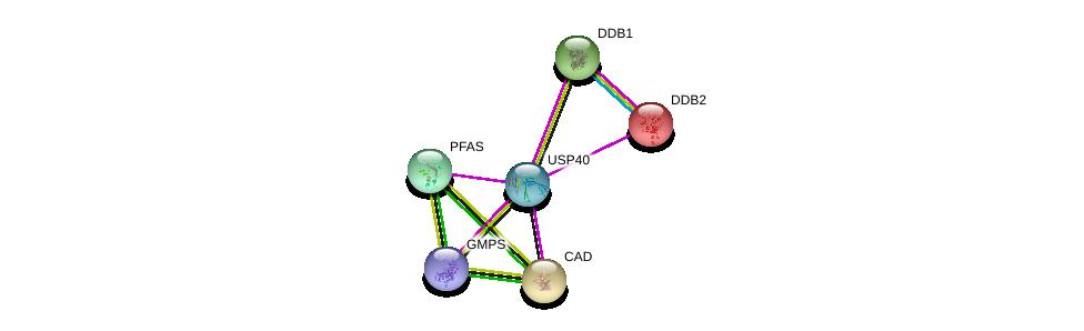 http://string-db.org/version_10/api/image/networkList?limit=0&targetmode=proteins&caller_identity=gene_cards&network_flavor=evidence&identifiers=9606.ENSP00000415434%0d%0a9606.ENSP00000264705%0d%0a9606.ENSP00000419851%0d%0a9606.ENSP00000313490%0d%0a9606.ENSP00000301764%0d%0a9606.ENSP00000256996%0d%0a