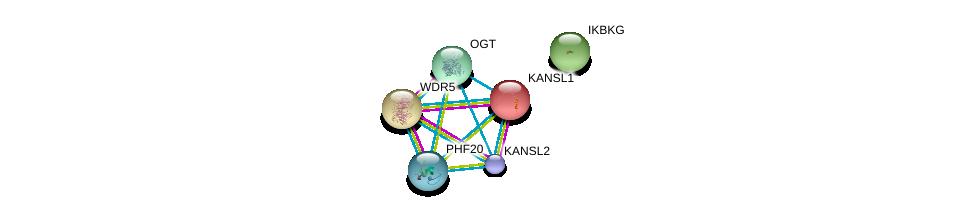 http://string-db.org/version_10/api/image/networkList?limit=0&targetmode=proteins&caller_identity=gene_cards&network_flavor=evidence&identifiers=9606.ENSP00000415436%0d%0a9606.ENSP00000363124%0d%0a9606.ENSP00000362824%0d%0a9606.ENSP00000262419%0d%0a9606.ENSP00000351446%0d%0a9606.ENSP00000358622%0d%0a