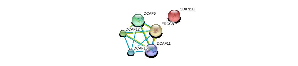 http://string-db.org/version_10/api/image/networkList?limit=0&targetmode=proteins&caller_identity=gene_cards&network_flavor=evidence&identifiers=9606.ENSP00000415556%0d%0a9606.ENSP00000355114%0d%0a9606.ENSP00000371682%0d%0a9606.ENSP00000265038%0d%0a9606.ENSP00000356814%0d%0a9606.ENSP00000228872%0d%0a