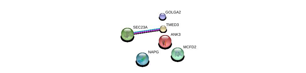 http://string-db.org/version_10/api/image/networkList?limit=0&targetmode=proteins&caller_identity=gene_cards&network_flavor=evidence&identifiers=9606.ENSP00000416097%0d%0a9606.ENSP00000324628%0d%0a9606.ENSP00000317271%0d%0a9606.ENSP00000299705%0d%0a9606.ENSP00000280772%0d%0a9606.ENSP00000306881%0d%0a