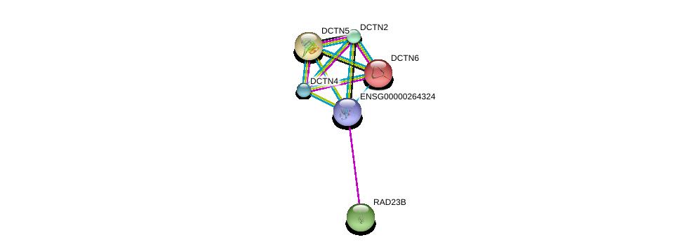 http://string-db.org/version_10/api/image/networkList?limit=0&targetmode=proteins&caller_identity=gene_cards&network_flavor=evidence&identifiers=9606.ENSP00000416453%0d%0a9606.ENSP00000300087%0d%0a9606.ENSP00000221114%0d%0a9606.ENSP00000408910%0d%0a9606.ENSP00000414906%0d%0a9606.ENSP00000350708%0d%0a